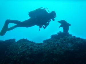 Gudrun und der Stein-Delphin