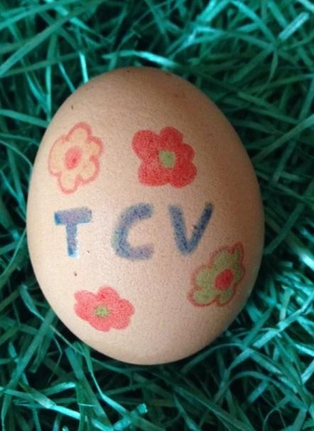 Frisch gelegt: das TCV-Ei