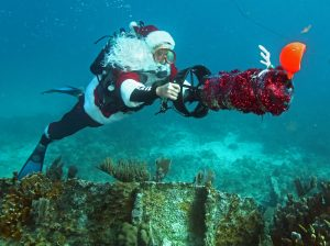 Spencer Slate, garbed as Santa Claus, glides over a shipwreck in the Florida Keys National Marine Sanctuary Friday, Dec. 17, 2010, off Key Largo, Fla. Owner of a local dive shot, Slate has been donning the Santa costume for years as part of a fundraiser for a local children's charity. FOR EDITORIAL USE ONLY (Bob Care/Florida Keys News Bureau/HO)